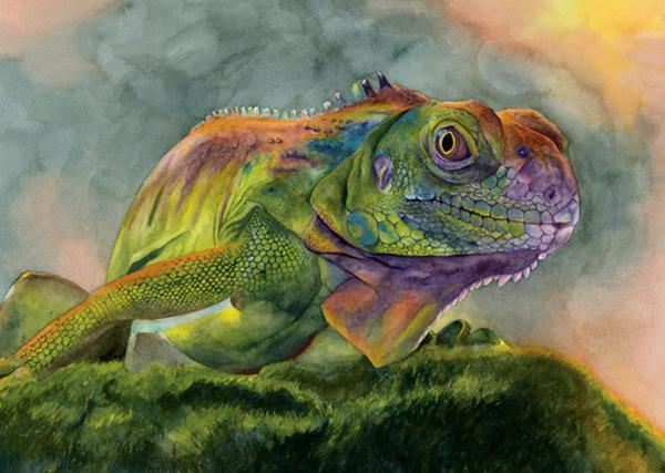 'Iguana' by Erica Tranquillo