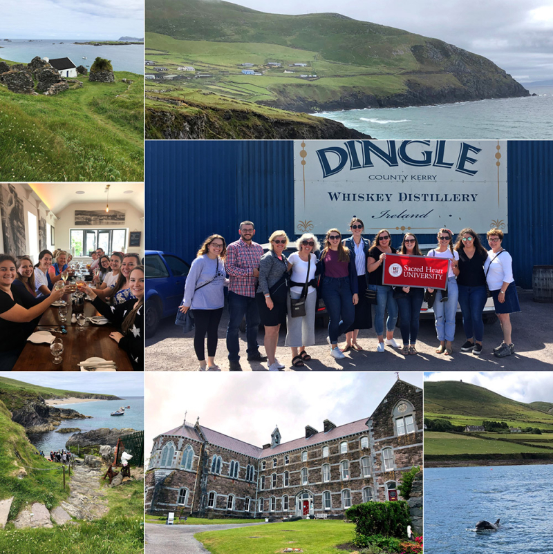 Alumni Trip to Dingle